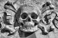 Crânio e ossos foto de stock