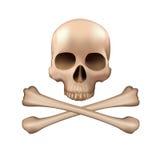 Crânio e ossos cruzados Fotos de Stock Royalty Free