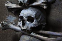 Crânio e ossos cruzados Imagem de Stock Royalty Free