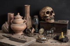 Crânio e outro Imagem de Stock Royalty Free