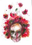 Crânio e papoilas ilustração royalty free