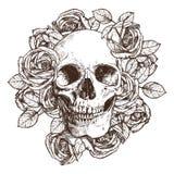 Crânio e rosas no estilo do esboço Ilustração desenhada mão Fotos de Stock Royalty Free