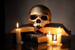 Crânio em livros Fotos de Stock