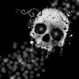 Crânio em um preto ilustração stock