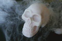 Crânio falsificado com Web de aranha falsificadas em torno dele Imagem de Stock Royalty Free