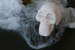 Crânio falsificado com Web de aranha falsificadas em torno dele Imagens de Stock Royalty Free