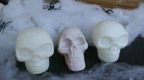 Crânio falsificado com Web de aranha falsificadas em torno dele Imagem de Stock