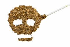 Crânio feito pelo cigarro e pelo cigarro Fotografia de Stock Royalty Free