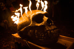 Crânio flamejante Fotografia de Stock Royalty Free