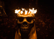 Crânio flamejante Imagem de Stock