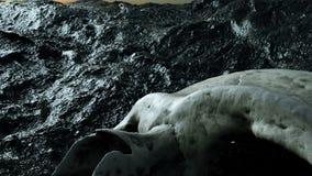 Crânio humano antigo Conceito do apocalipse Animação 4K realística super video estoque