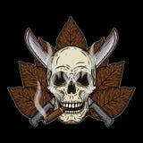 Crânio humano com um charuto e uns machetes cruzados Fotografia de Stock Royalty Free
