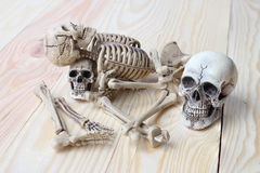 Crânio humano e esqueleto humano no fundo da madeira de pinho Foto de Stock Royalty Free
