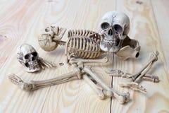 Crânio humano e esqueleto humano no fundo da madeira de pinho Foto de Stock