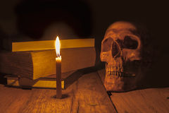 Crânio humano no fundo escuro Foto de Stock Royalty Free