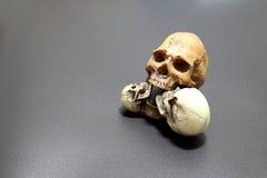 Crânio humano no fundo preto da areia de superfície, ainda estilo de vida Imagem de Stock