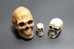 Crânio humano no fundo preto da areia de superfície, ainda estilo de vida Fotografia de Stock Royalty Free
