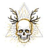 Crânio humano sobre o símbolo sagrado da geometria Demônio, chara do conto de fadas ilustração do vetor