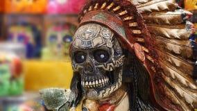 Crânio indiano Imagens de Stock