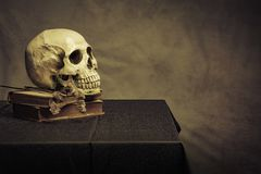 Crânio na tabela, ainda vida Imagens de Stock Royalty Free