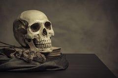 Crânio na tabela, ainda vida Imagem de Stock Royalty Free