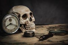 Crânio na tabela, ainda vida Foto de Stock Royalty Free