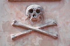 Crânio no cemitério. Foto de Stock