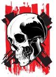 Crânio no fundo branco Fotos de Stock Royalty Free