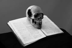 Crânio no livro velho fotos de stock