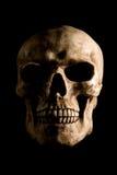 Crânio no preto Fotografia de Stock Royalty Free