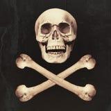 Crânio & ossos cruzados fotos de stock royalty free
