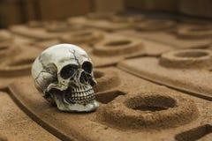 Crânio ou esqueleto da fotografia humana Imagem de Stock