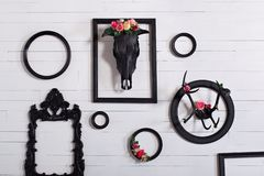 Crânio preto de um cervo e de chifres em uma parede branca de madeira com quadros vazios para pinturas O conceito de decorar um w imagem de stock royalty free
