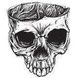 Crânio que tira 02 ilustração stock