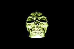 Crânio verde isolado no preto Imagens de Stock