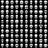 Crânios Fotos de Stock
