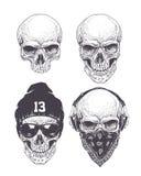 Crânios de Dotwork ajustados Fotografia de Stock Royalty Free