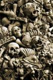 Crânios e ossos Fotografia de Stock