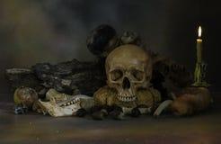 Crânios e pilha do osso com podridão do fruto e da flor Foto de Stock