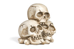Crânios humanos Fotos de Stock