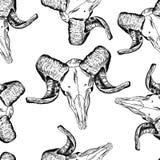 Crânios, teste padrão sem emenda do vetor Fotografia de Stock Royalty Free