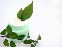 Crème Photo stock
