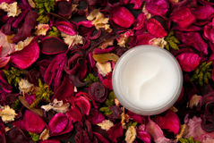 Crème Images stock
