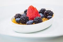 Crème brulée Image stock