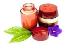 Crème cosmétique Photographie stock libre de droits