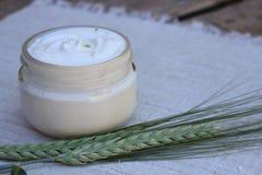 Crème cosmétique avec la transitoire de blé photo libre de droits