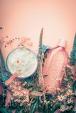 Crème cosmétique et lotion de dermatologie de fines herbes avec des fleurs Produits de soins de la peau sur le fond en pastel photo libre de droits