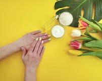 Crème cosmétique, feuille de monstera d'essence de manucure d'été de mains sur le papier coloré jaune photographie stock libre de droits