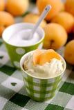 Crème d'abricot Photographie stock libre de droits