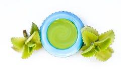 Crème d'ajowan sur le blanc Photographie stock libre de droits